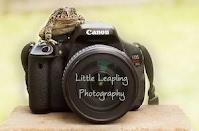 http://www.littleleapling.com/pet-portraits
